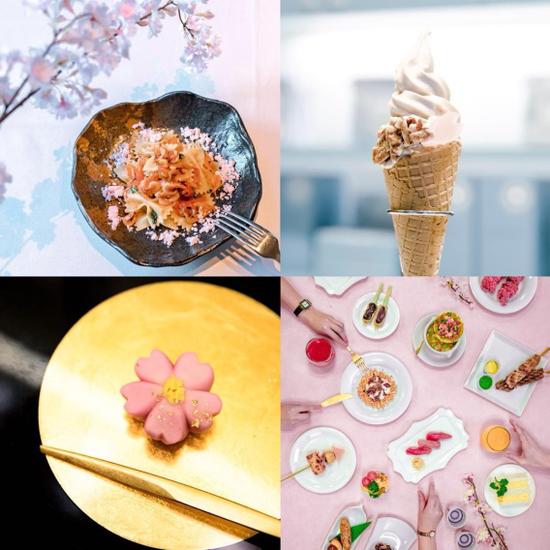 樱花美食摄影大赛作品