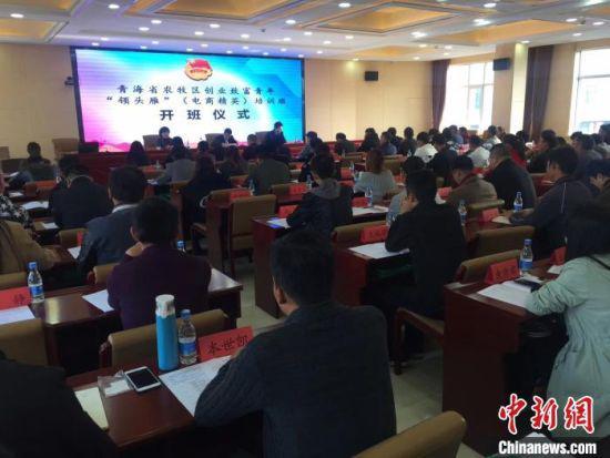 电子商务进农村示范项目助力青海藏区经济高质量发展