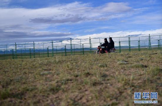 在可可西里索南达杰保护站,龙周才加(右)与队友才仁多杰骑摩托巡查藏羚羊救护基地(6月29日摄)。新华社记者 张龙 摄