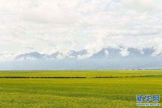 环保、特色、创新 青海乡村旅游走向高质量发展