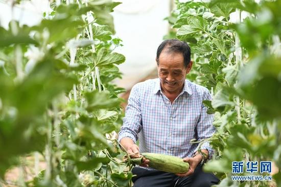 青海平安:果蔬示范园促增收