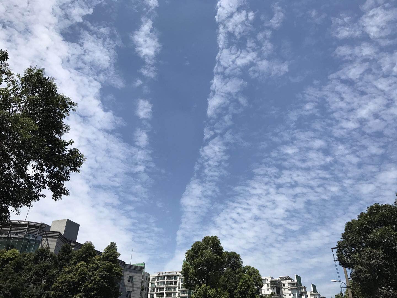 雨才消停高温又来 今日四川多地发布高温橙色预警