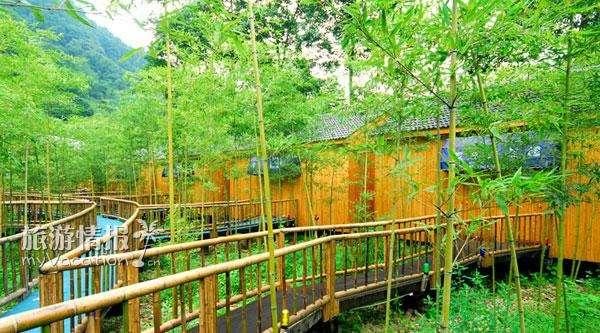 今年四川省级森林康养基地出炉了 有没有你家乡