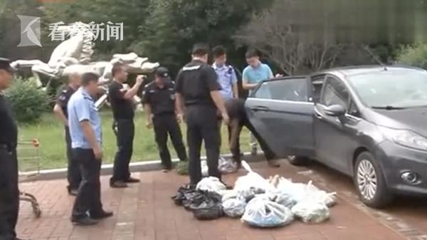 视频|男子凌晨偷了620斤菜 自己也不知道要吃到哪一天