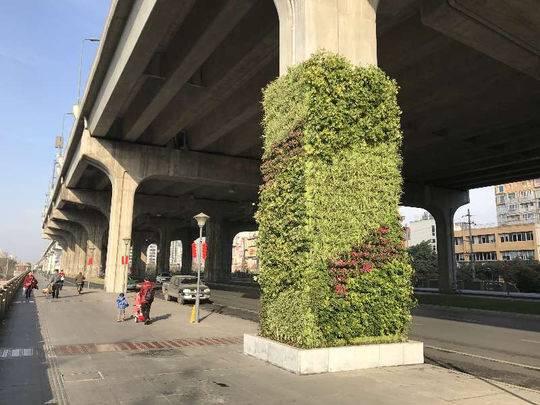 立体绿化水泥森林 成都二环高架桥人行道柱墩穿新衣