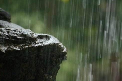 小满雨打芭蕉 未来两天四川有强降雨
