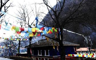 四川黑水七彩藏式民居夺人眼球