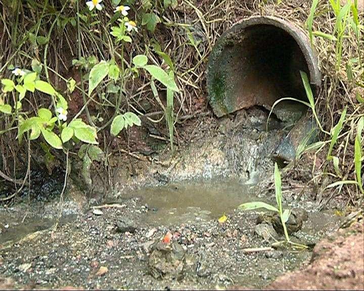 在水源地内建养殖场 泸州叙永县一养殖户输了官司