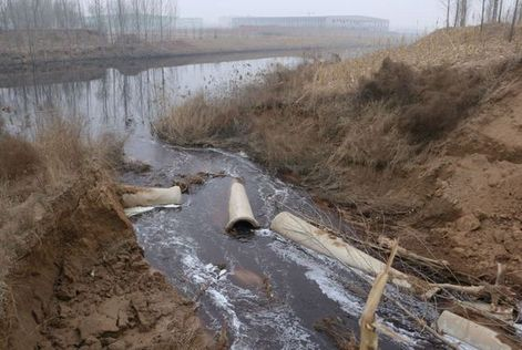 泸州村民举报养猪场直接排污入河 调查并未直接排污