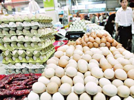 8月份内江城区鸡蛋价格大幅回升 环比上涨14.9%