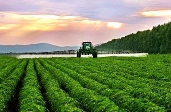 八部委共同敲定 四川荣县入围了这个农业公示榜单