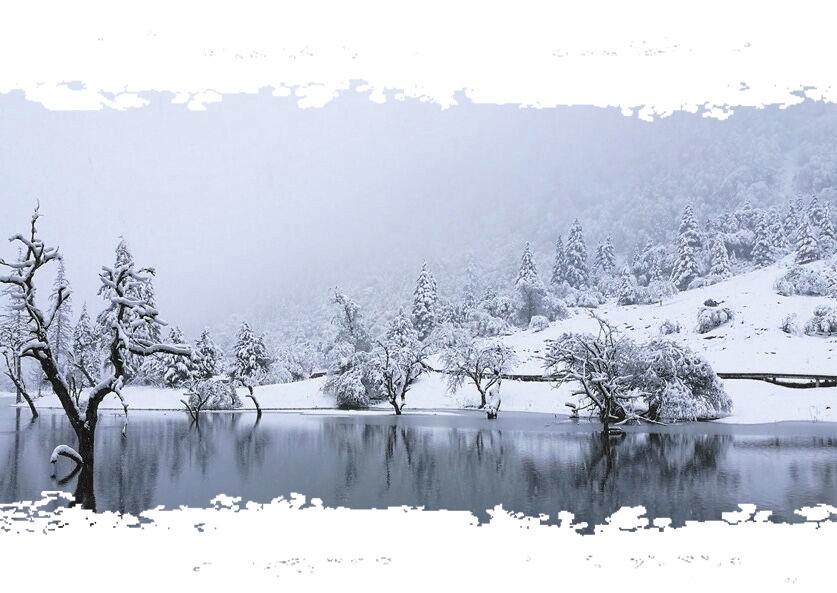 今日霜降四川多地开始降雪啦 未来三天蓉城阴天+雨