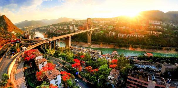 中国天然林保护二十年:资源型城市变身阳光花城