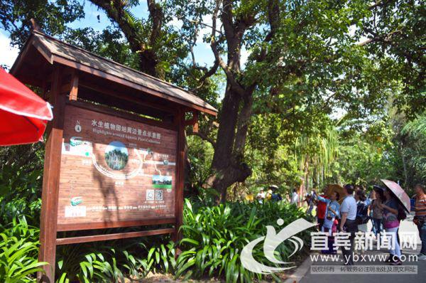 私人定制游发力 成宜宾淡季旅游市场一大掘金点