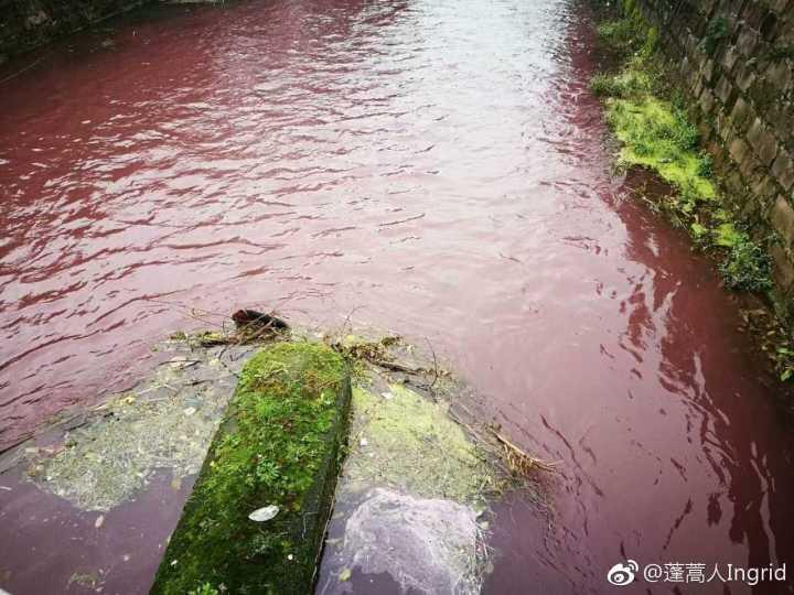 绵竹清平桥河流成血红色 相关部门调查系颜料残渣导致