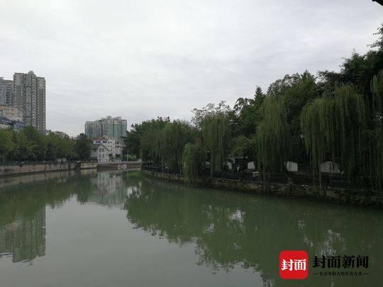 左手錦江右手公園 新增的這條綠道太美了