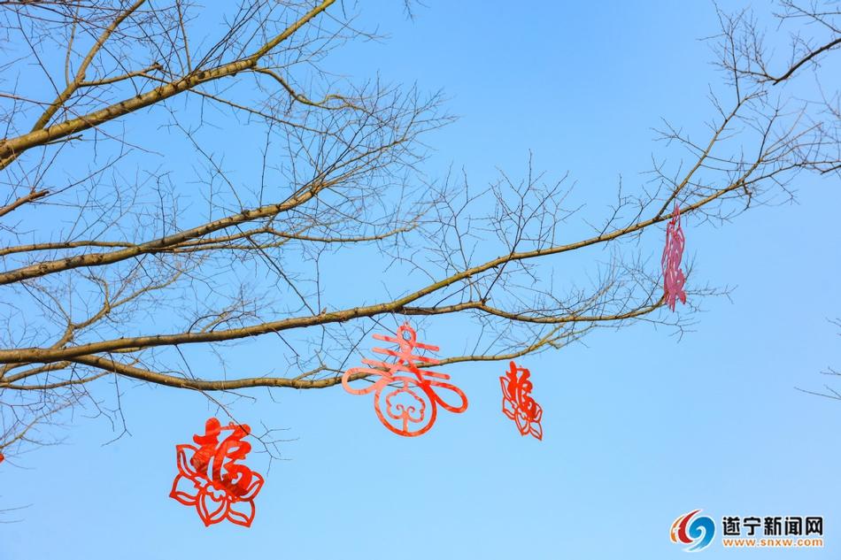 遂宁:大红灯笼高高挂 喜气洋洋迎新春