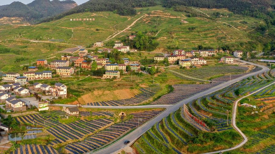 四川华蓥:产业兴 乡村美 农民富