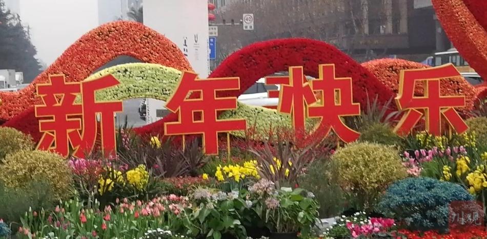 成都:鲜花装点天府广场 繁花似锦年味浓