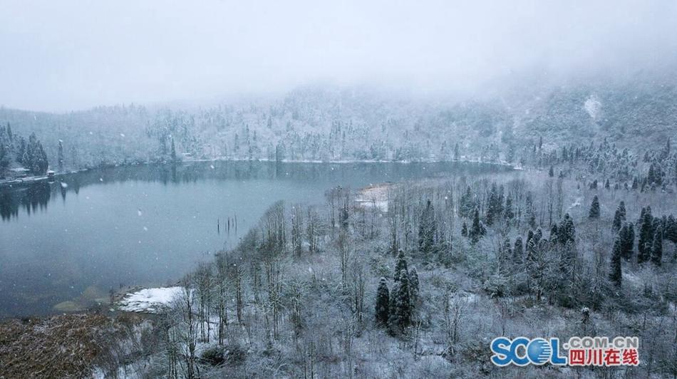 雪下得这么深!都江堰龙池银装素裹 美如幻境