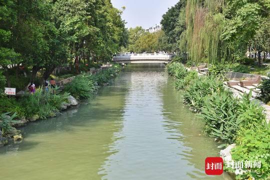 一条绿道串起杜甫草堂、浣花溪、宽窄巷子 你还不来?