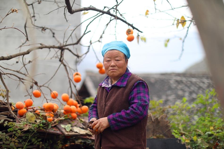 探访:九寨沟旅游复苏,村民满怀信心摆摊卖柿子