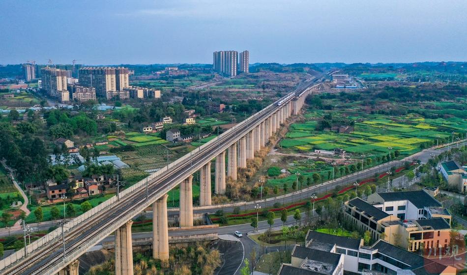 资阳沱江特大桥:穿行在春天的高铁