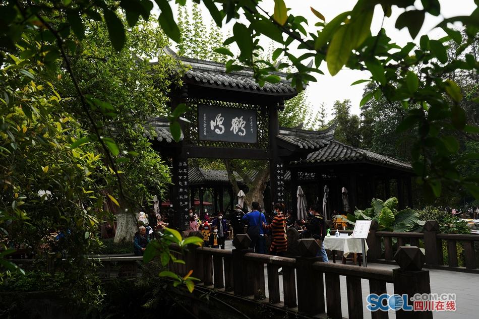 """清明假期 成都人民公园百年""""鹤鸣""""茶社人气高"""