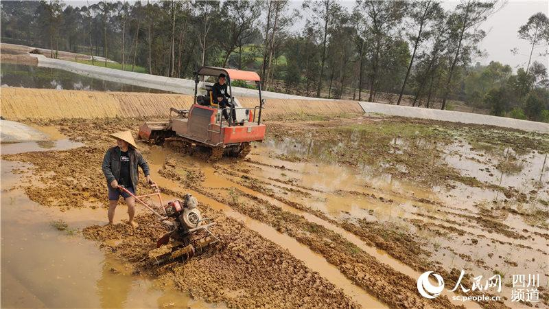 一年之计在于春 自贡荣州大地忙春耕