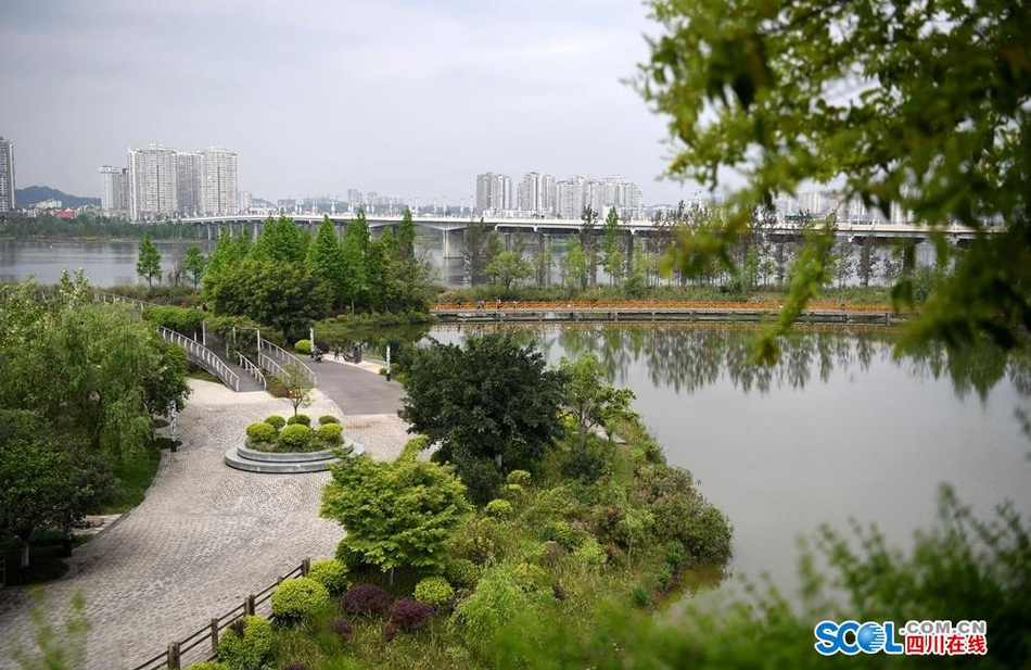 生态湿地城中有水水中有城 海绵之都市民点赞