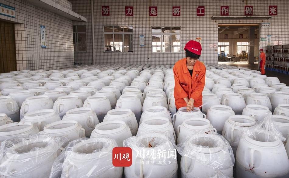 广安:生产繁忙 豆瓣飘香