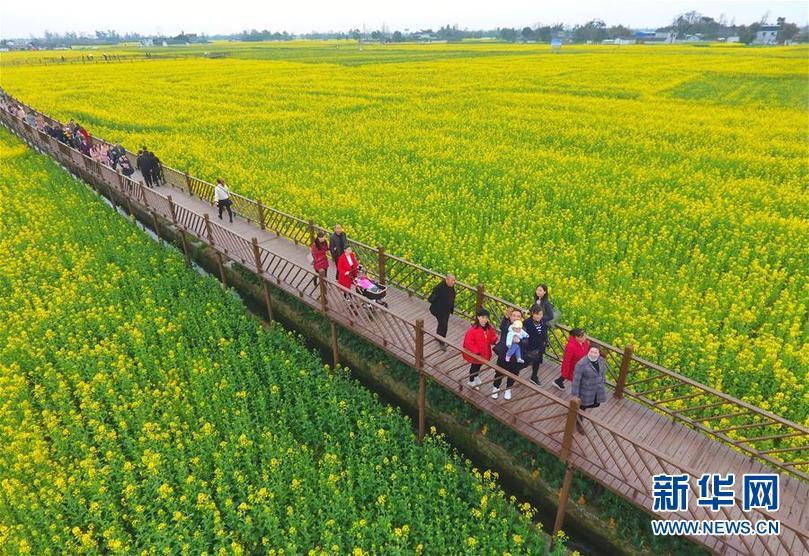 广汉撤市设区争论过去一年 官方新近回复:还在征求意见