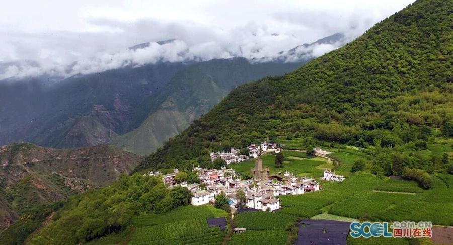 绿色海洋里的藏式民居美如画