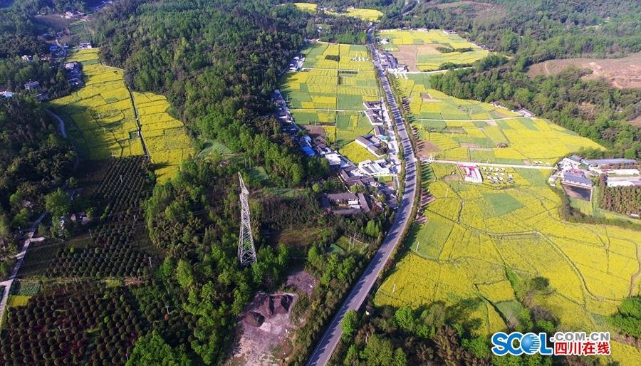 1分钟看遍中国最美乡村公路的最美季节