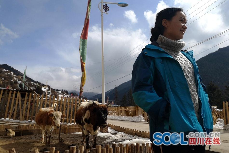 若尔盖求吉乡麻藏村——雪域深山里的幸福生活