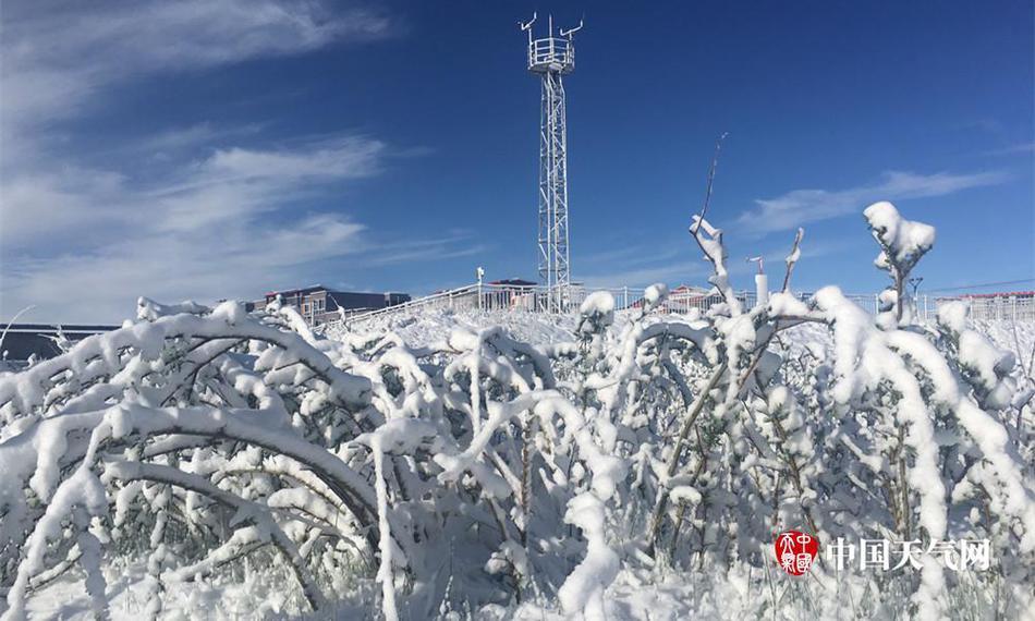 四川若尔盖六月飘雪 降雪量刷新当地近20年记录