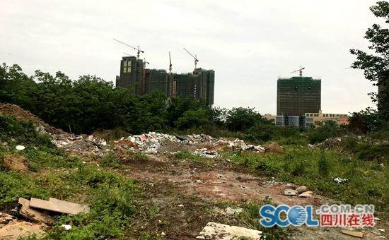 新都区毗河边被倾倒大量垃圾?官方回复:处理后将植绿