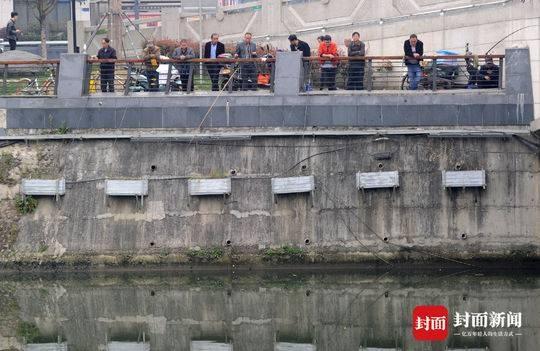 禁渔期 成都锦江边仍有人钓鱼