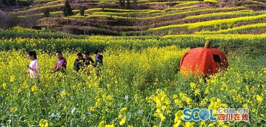 颜值爆表!南充顺庆2000亩油菜花开遍山野美如画卷