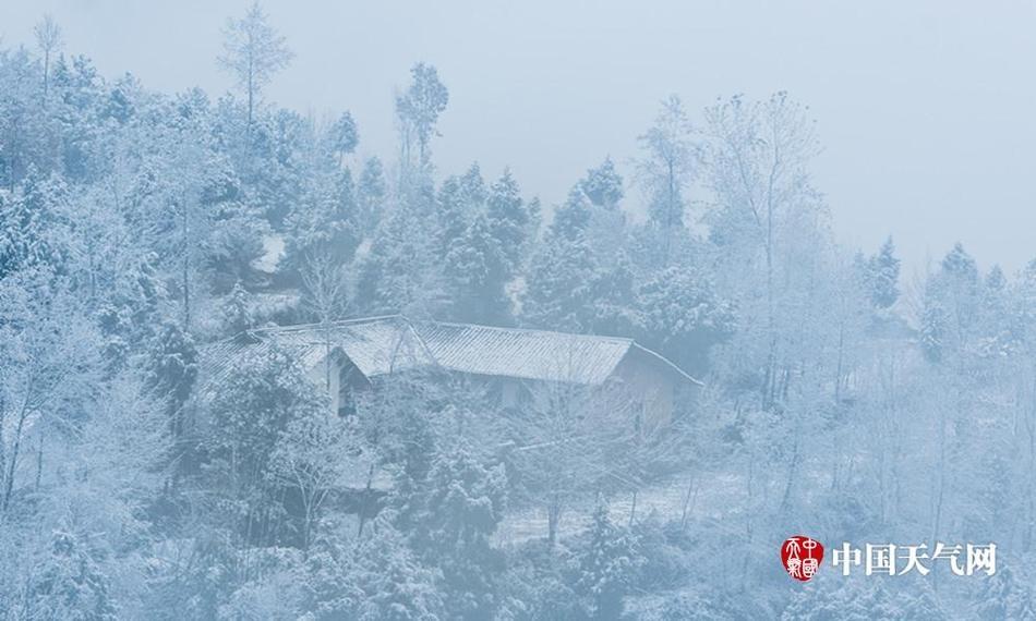 雪中的四川巴中南阳森林公园宛如童话世界