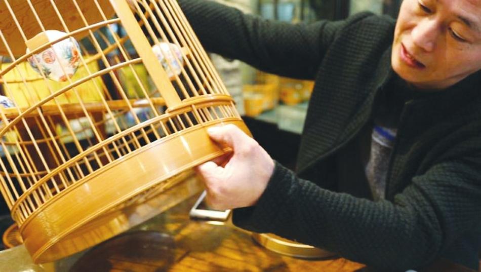 一只鸟笼200万? 西南第一鸟市见证川派笼鸟文化发展