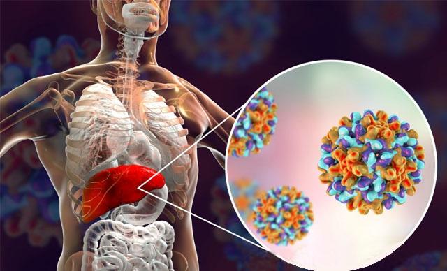 四川省新增36例新型冠状病毒感染的肺炎确诊病例