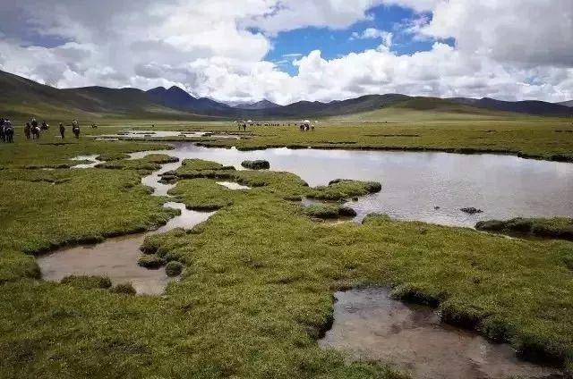 四川甘孜长沙贡玛自然保护区正式晋升国际重要湿地
