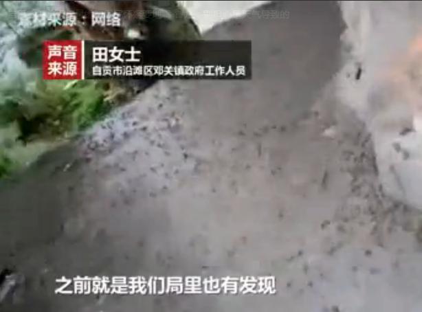自贡突然出现大量蟾蜍居民怀疑要地震 官方:别担心是天气导致