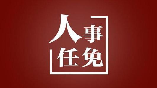 一日之内 鄂渝闽川青吉6省份副省长(副市长)上任
