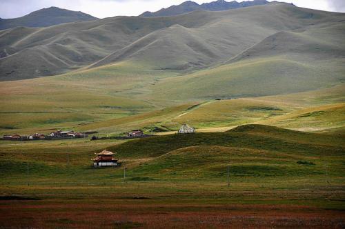 辐射整个牧区 四川年内将启动草原两大园区建设