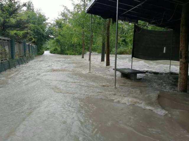 新津启动Ⅲ级(黄色)防汛应急响应 南河预计有超10年一遇洪水