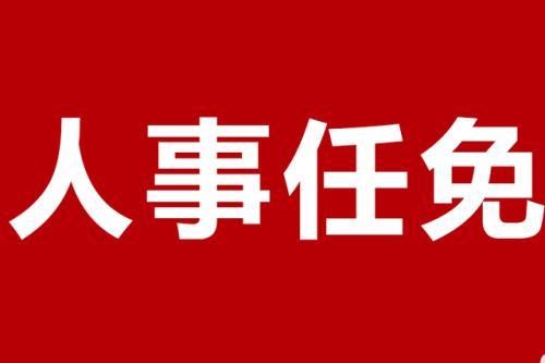 成都金堂县任免一批干部