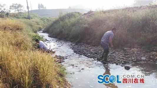 今年前三季度 四川这6条河流水质优良比例为100%