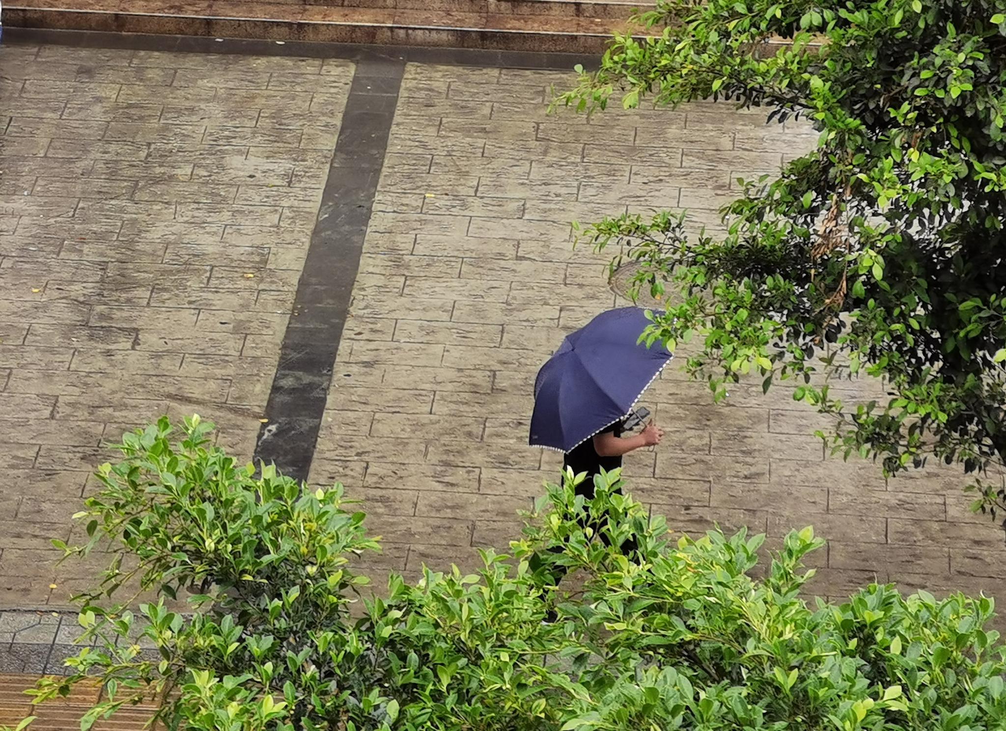 长假8天四川天气主题词就两个:小雨多、要降温